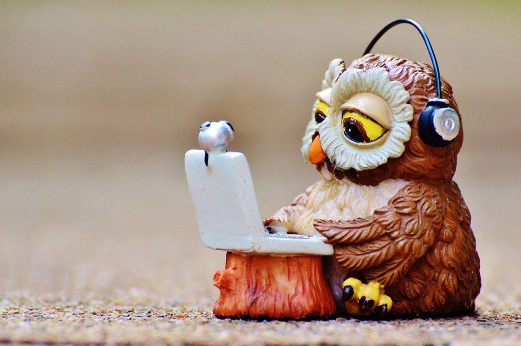 hibou, ordinateur, casque d'écoute